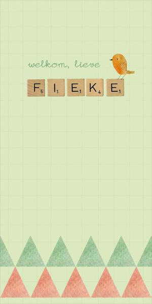 Geboortekaartje Fieke